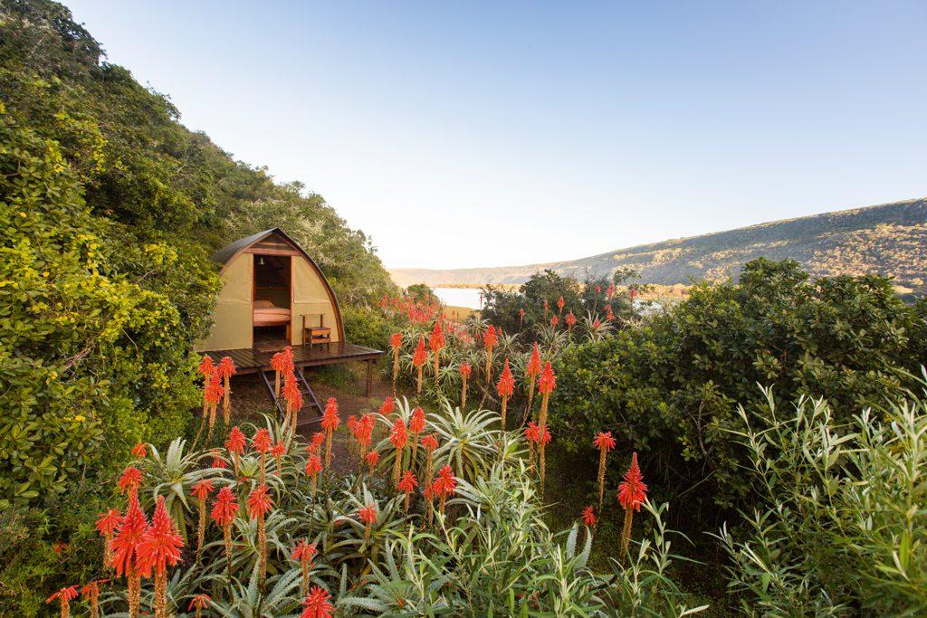 River Tented Camp - Vermaaklikheid - Teagan Cunniffe